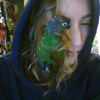 closeup picture of me with a parrot in my face